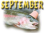 September - Big Rainbows, River Canoeing, Mushrooms, Shooting Stars